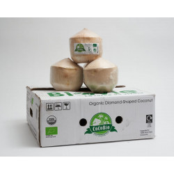 fresh coconuts cocoboys young water