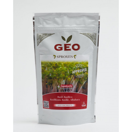 organic basil seed geo sprouted