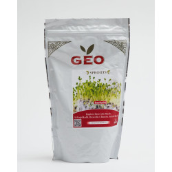 chinese broccoli seed organic geo sprouted