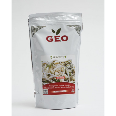 organic mung bean seed geo sprouted