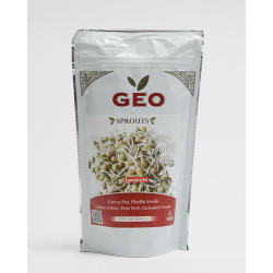 organic green pea seed geo sprouted