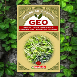 GEO Sunflower Seed To Germinate