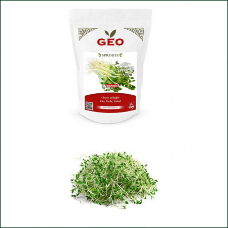 Sprouted Seed Organic Red Clover