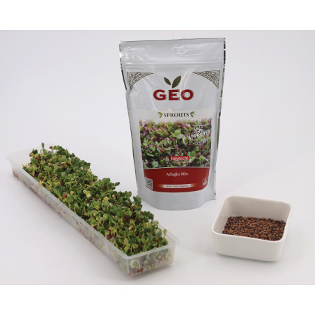 sprouted seeds danger