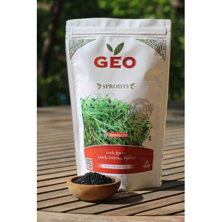 Sprouted leek seed Bavicchi